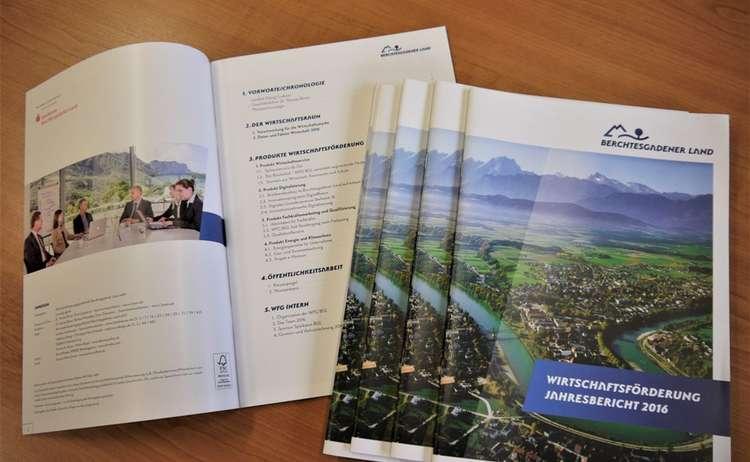 Jahresbericht Wfg 2016 2