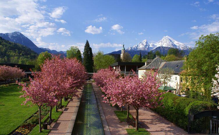 Kurgarten bad reichenhall Kirschblüte